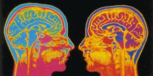 Φωτογραφίες εγκεφάλου