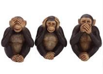Κοινωνική μάθηση μαϊμούδες
